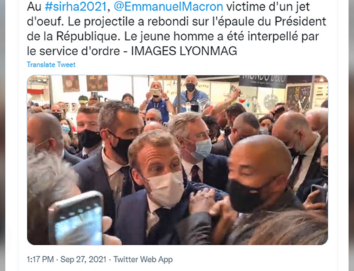 French President Macron hit by egg-shaped projectile at catering & food fair in Lyon (VIDEO)